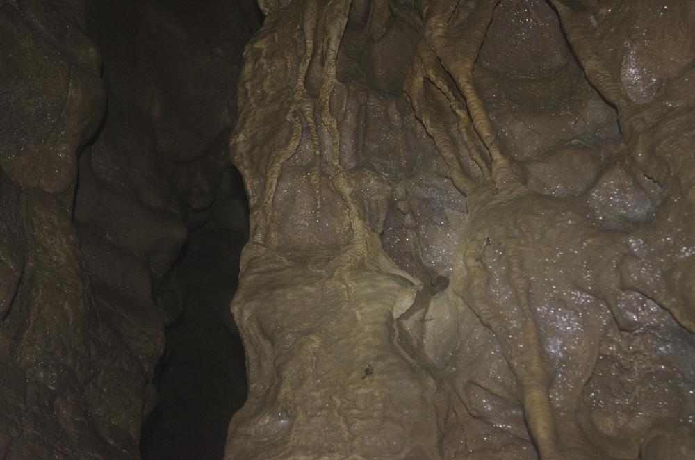 Стены пещеры очень похожи на плоть чудовища